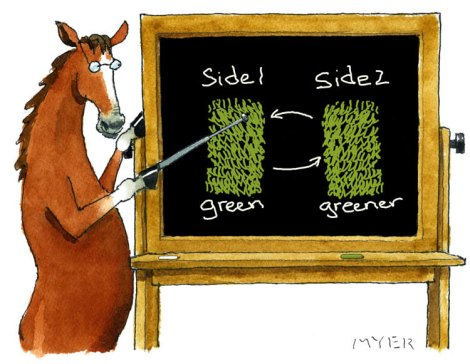 greener here or there? The grass is greener on the other side. the other sde is greener