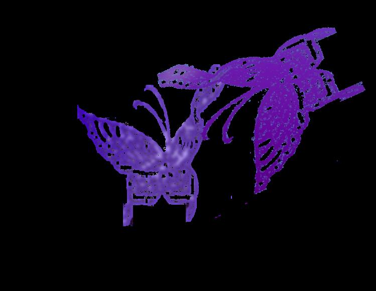 butterfliespurpleflit