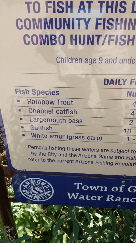 these are the fish stocked in the lake